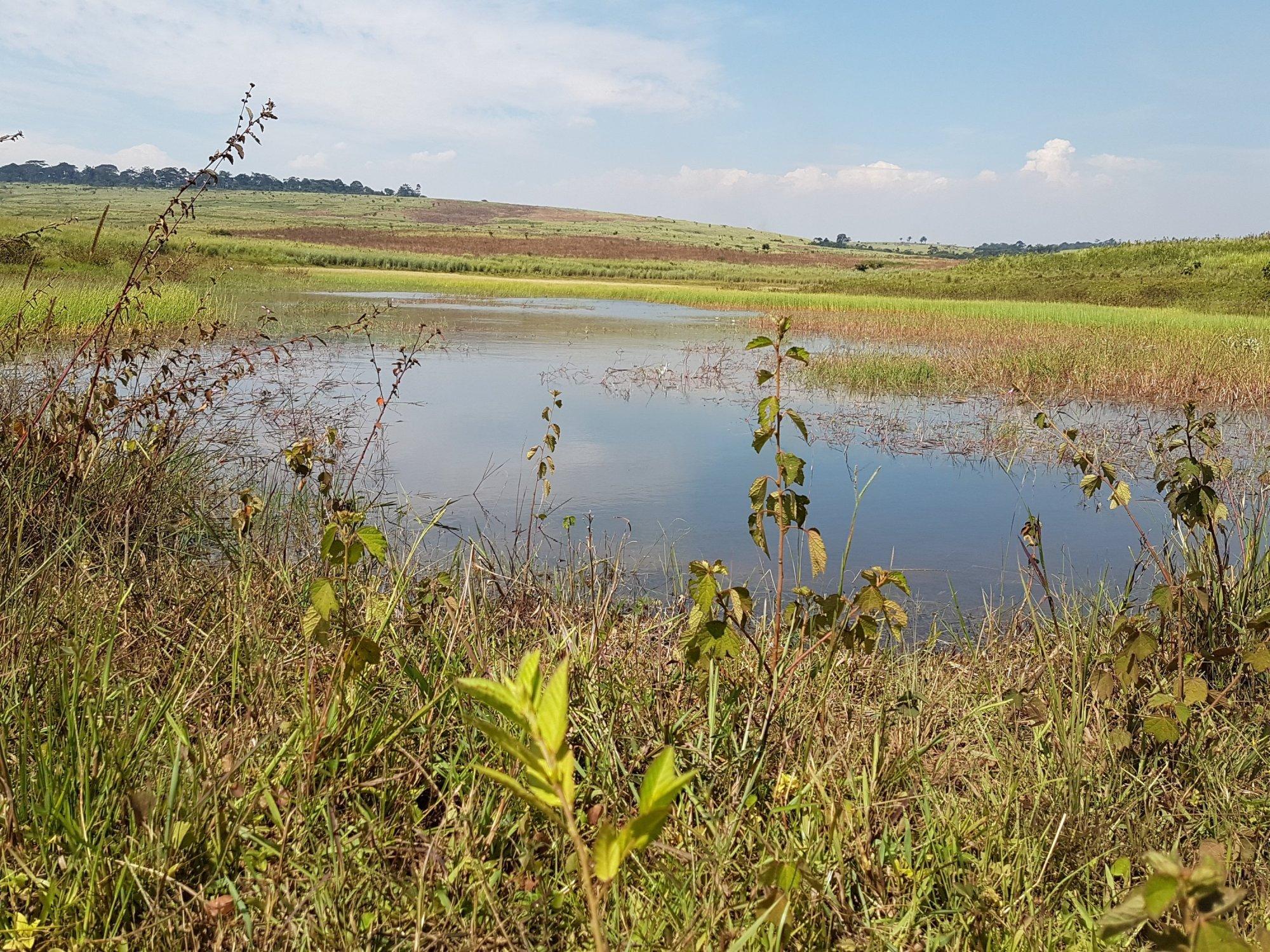 Banda Makaiwa Angola Lake